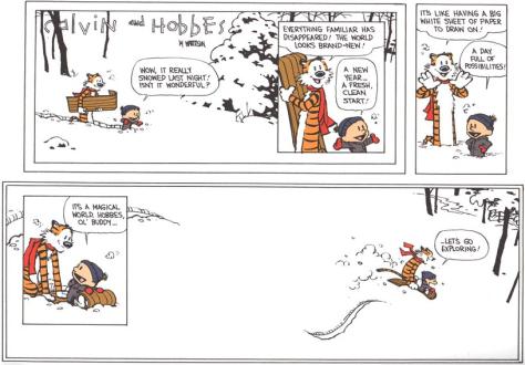 Calvin and Hobbes Cartoon;