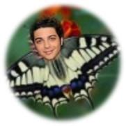 1a - gian butterfly