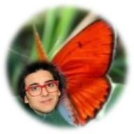 1a - piero butterfly