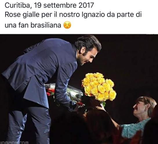curitiba fan