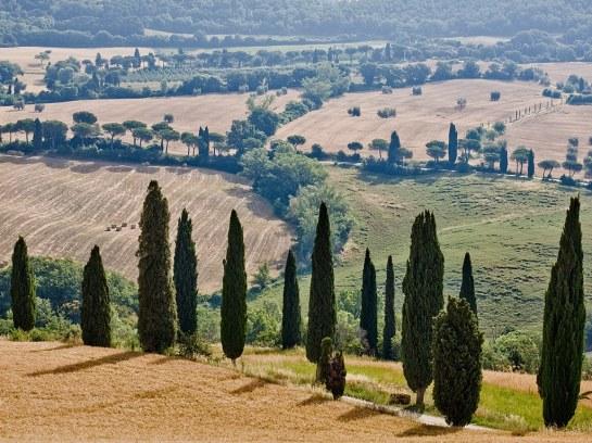 tuscany-hotels-monteverdi